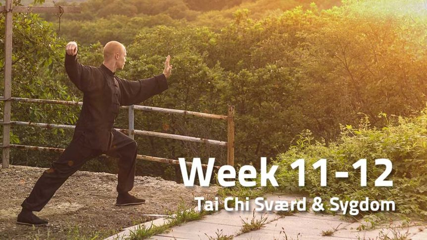 Peter Rosendahl blog Week 11-12 Tai Chi Sværd